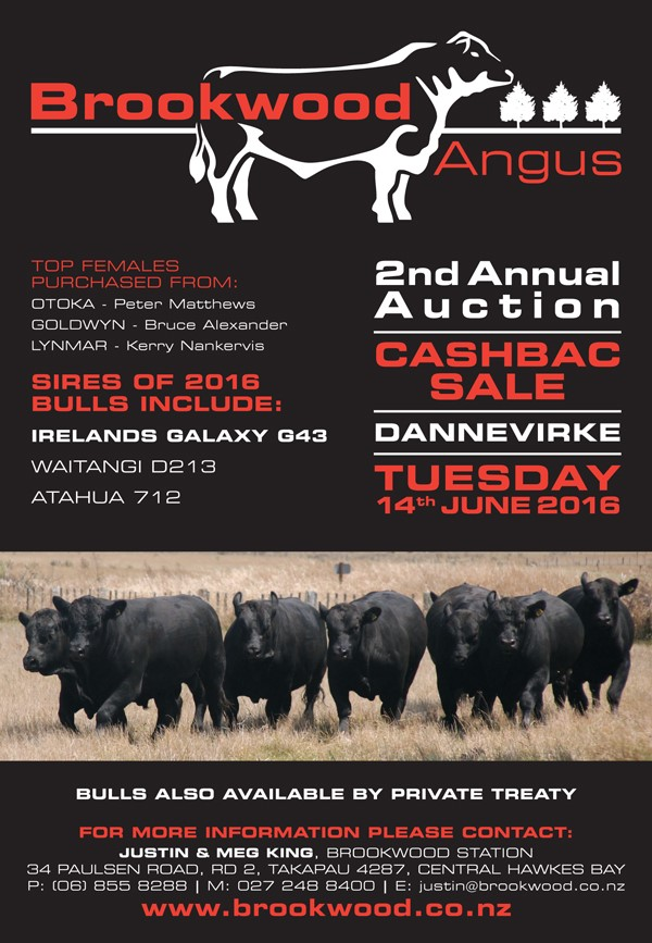 2nd Annual Bull Sale- June 14th 2016