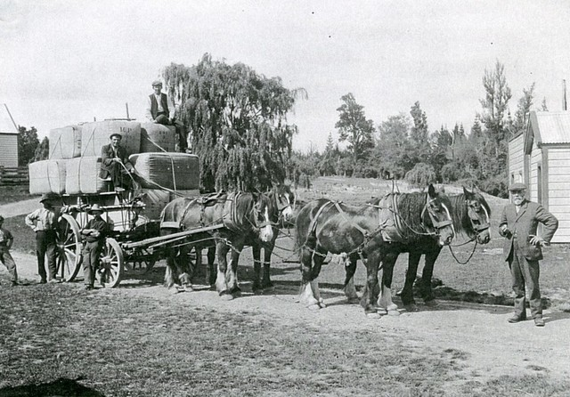 Outside Brookwood woolshed around 1910 - Mathias Paulsen on the right